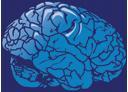 Little Brain