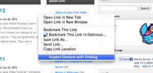 FireBug HTTPS