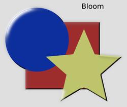 Bevels Bloom