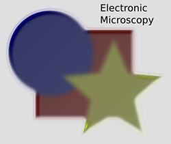 Bevels Electronic Microscopy